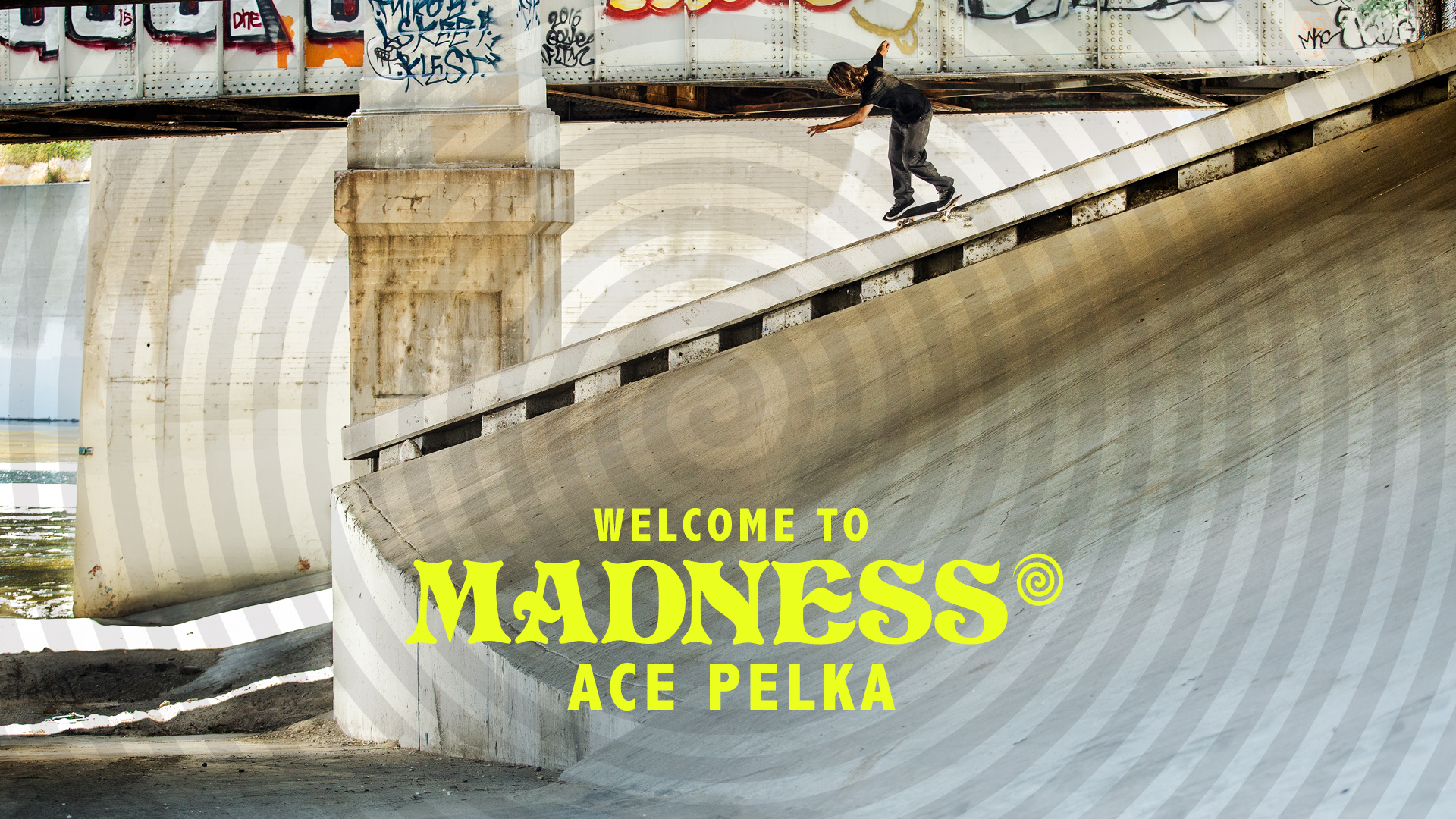 Madness welcome Ace Pelka